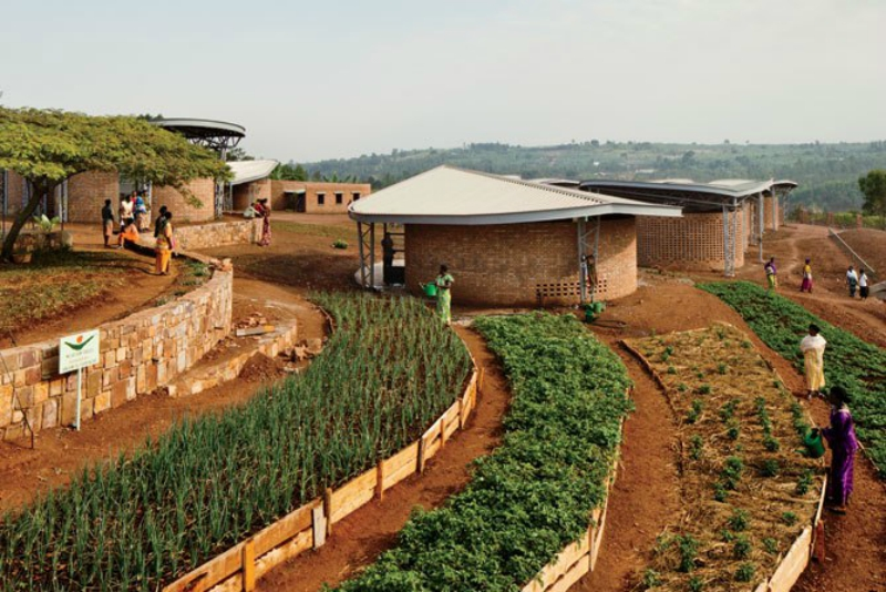 Program graduates in Rwanda grow vegetables for income at the Women's Opportunity Center