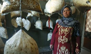 Nesa at her mushroom farm. Photo credit: Rada Akbar